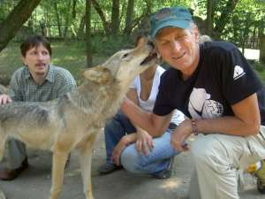 Marc Bekoff and Adam Miklosi with wolf